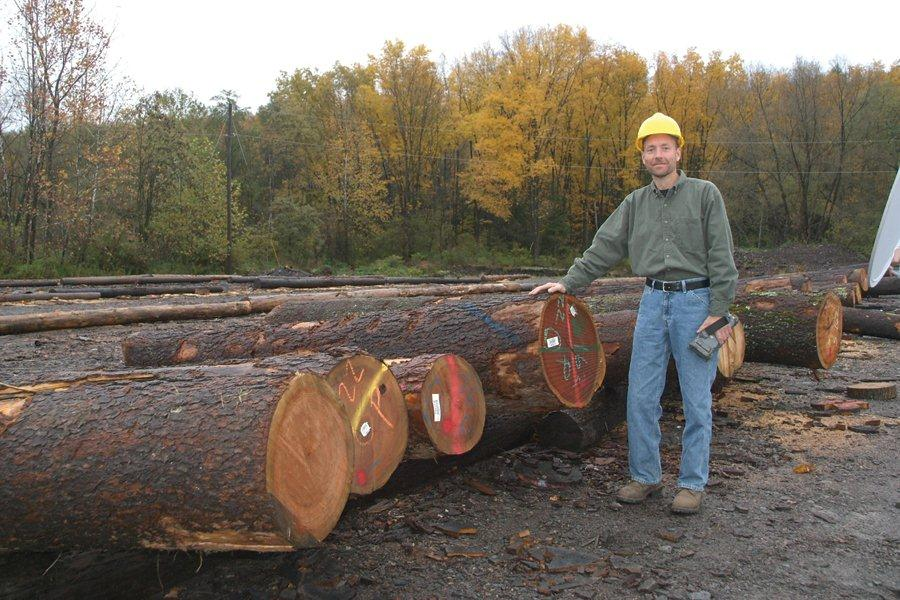 Wisconsin Forest Recovery