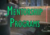 Mentorship Programs. Can They Help Your Business?