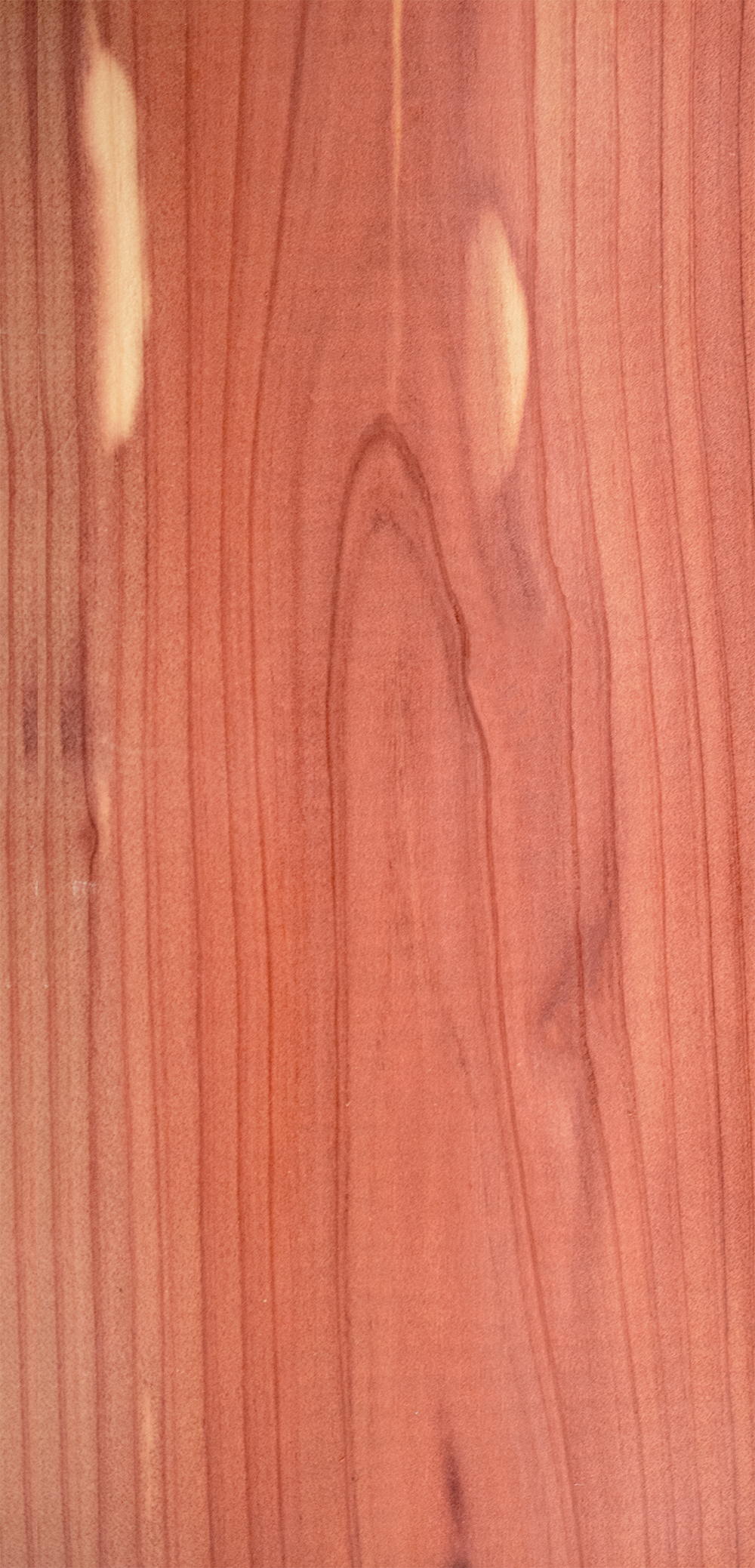 OC Aromatic Red Cedar resize